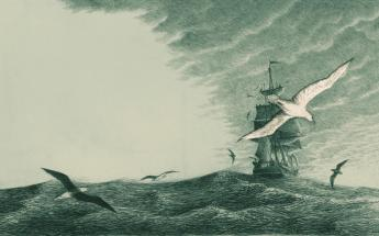 to_the_pursuit_of_moby_dick